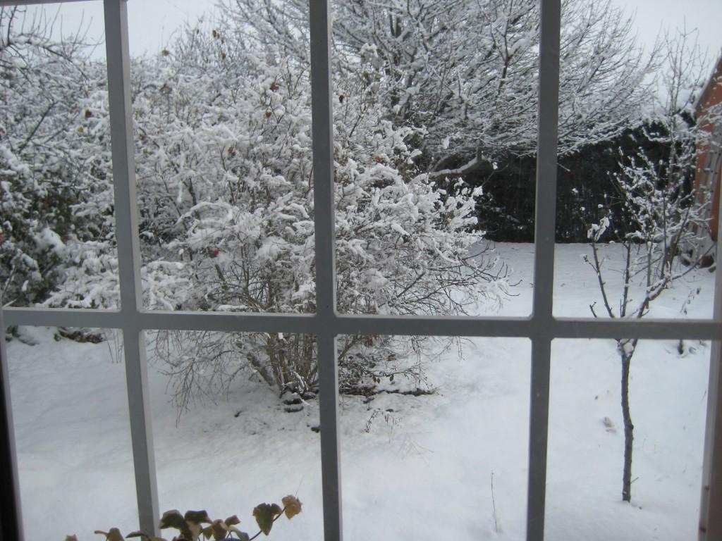 Nevada desde la ventana en El Jardín de Pepe Plana