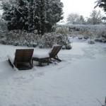 El Jardín en Enero