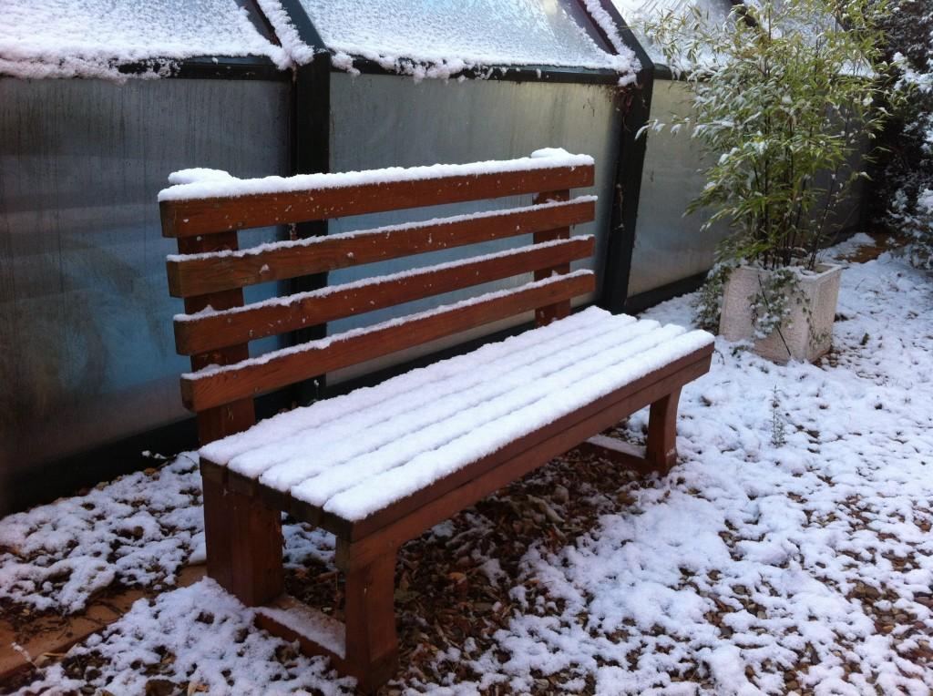 Febrero, ¿qué está pasando en el Jardín?