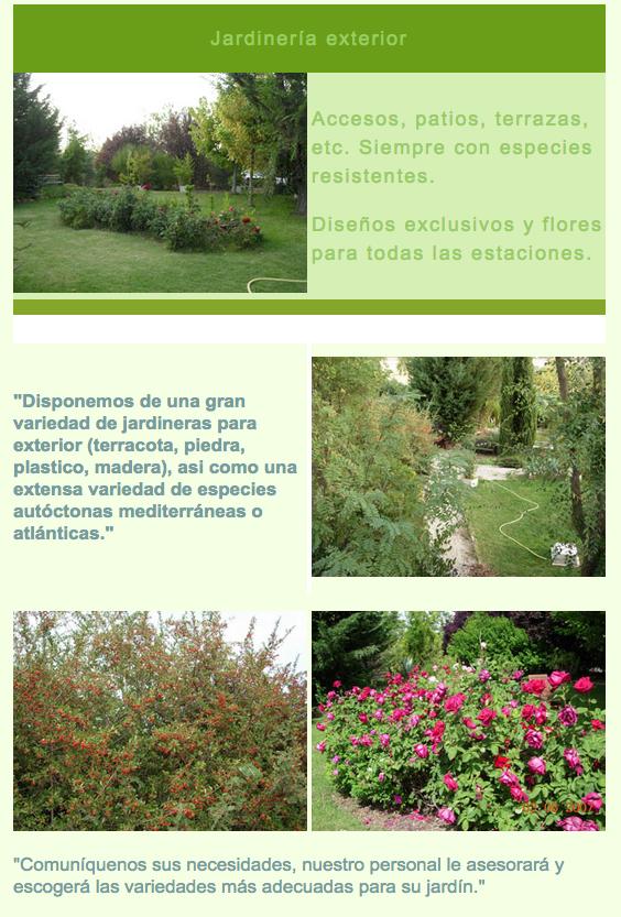 Cuidaplantas.com, empresa de Jardinería y paisajismo en Madrid