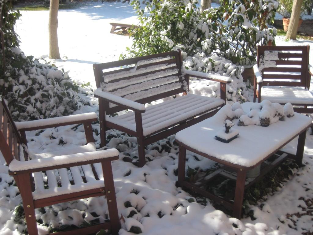 Nevada en el jardín de PepePlana.com