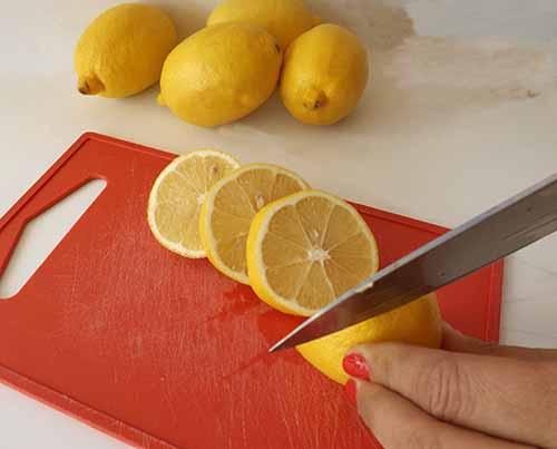 Centro de mesa original con limones amarillos y flores