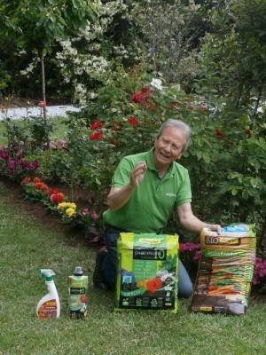Plantar plantas y flores en el jardín