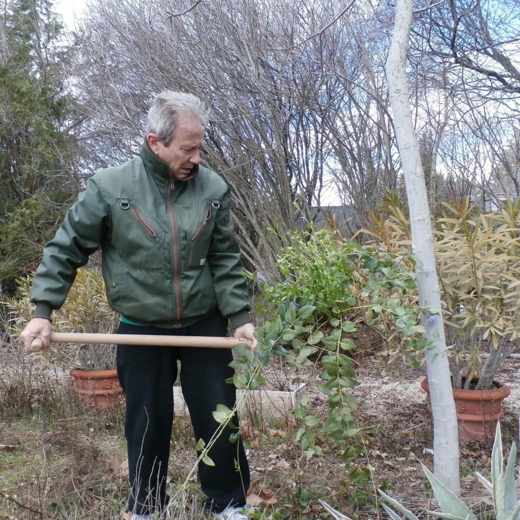 Asociación Vida Sana y Cultivabio: curso online gratuito