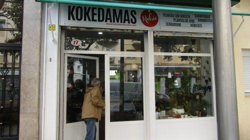 Kokedamas Rubio está en Madrid